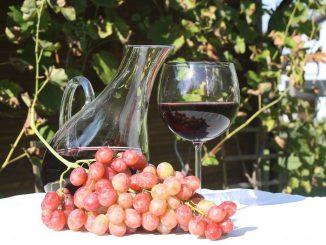 amarone_vino rosso_800x533